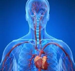 complicazioni della mononucleosi miocardite