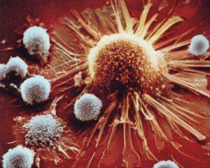 approccio farmacologico immunoglobuline specifiche