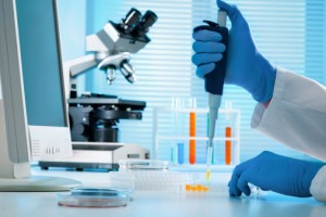 virus Epstein-Barr potenzialmente oncogenico