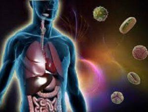 malattia linfoproliferativa legata all'X